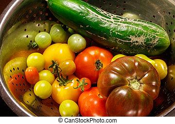 höst, grönsaken, färgrik