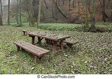 höst, i park