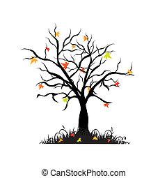 höst, lönn träd