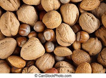 höst, nötter