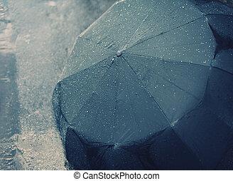 höst, regnfall, paraply, dag, våt