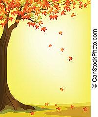 höst, träd, bakgrund