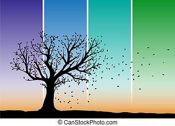 höst, träd, silhuett