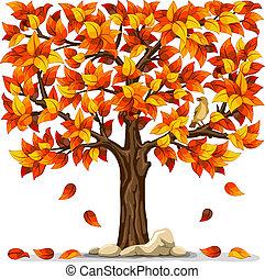 höst, träd