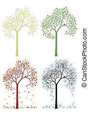 höst, vinter, fjäder, sommar, träd