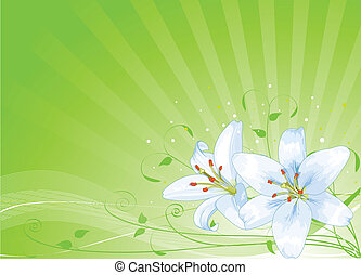 húsvét, háttér, liliomok