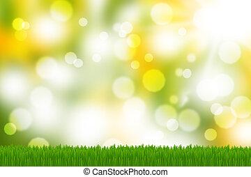 húsvét, kaszáló, eredet, kaszáló, bokeh