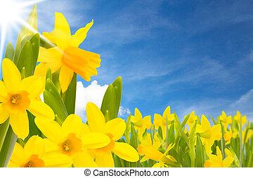 húsvét, kaszáló