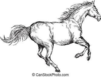 húzott, ló, kéz