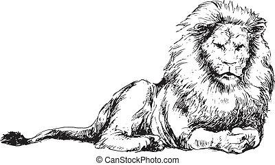 húzott, oroszlán, kéz