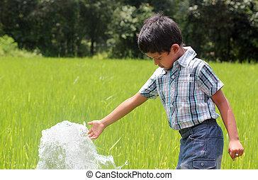 hübsch, indische , kind, spielende , mit, wasserquelle, in, a, üppig, kultiviert, paddy feld, befindlich, in, küsten, karnataka, von, süden, india., der, junge, gleichfalls, antikisiert, ungefähr, 6, jahre