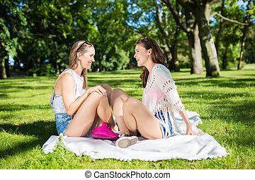 hübsch, weibliche , friends, entspannend, park, sprechende