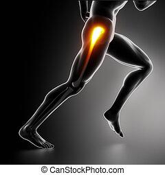 hüfte, verletzung, koncept, sport