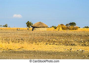 hütte, traditionelle , stammes-, leute., kenia