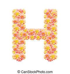 h, 白, 隔離された, アルファベット