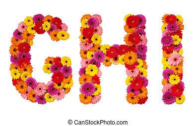 h, alfabeto, isolado, -, g, letra, flor, branca