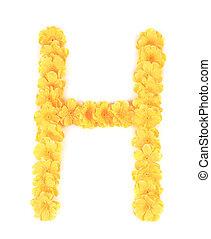 h, flor, alphabet., letra