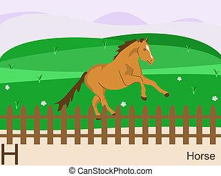 h, häst, djur, alfabet