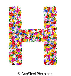 H, letter of the alphabet in different flowers