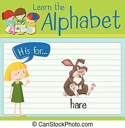 h, liebre, carta, flashcard