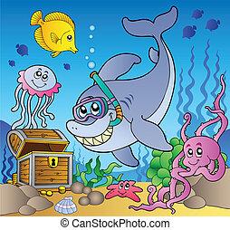 haai, duiker, met, schatkist