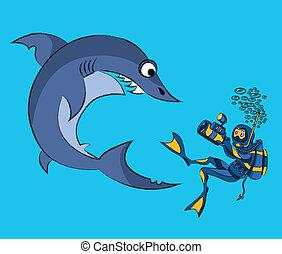 haai, het fotograferen