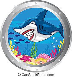 haai, spotprent, frame, patrijspoort