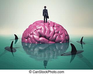 haaien, hersenen, water