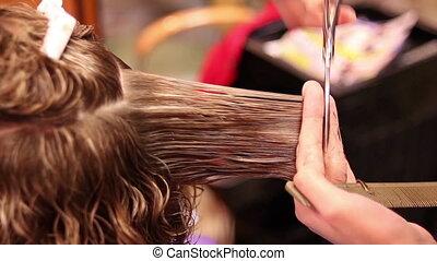 haar salon, schneiden, schere, frauen