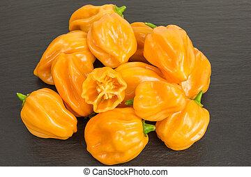 habanero chili pepper - chili pepper habaneros which are...