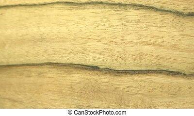 Hackberry Wood Piece Door to Light - Distressed old...