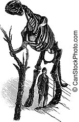 Hadrosaurus skeleton vintage engraving