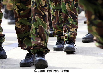 hadsereg
