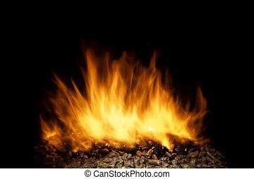 hagel, låga, levande, brännande, ved