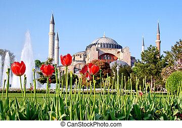 Hagia Sophia, Istanbul, Turkey - Garden of Hagia Sophia in...