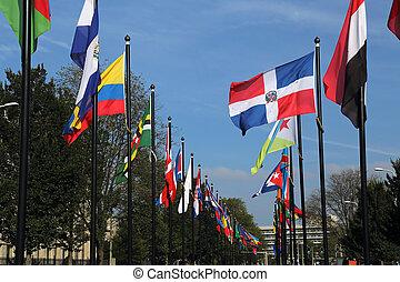 hague, 国際旗, オランダ