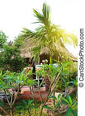 hagyományos, épület, vietnam