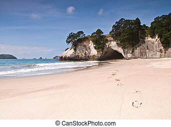 Cathedral Cove - Hahei at Cathedral Cove on the Coromandel...