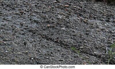 Hail on Asphalt - Heavy Hail bounces off asphalt