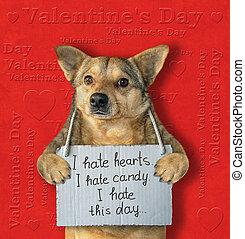 haine, chien, saint-valentin, 2