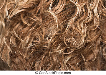 hair as background