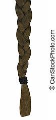 Hair Braid - A braid of long hair