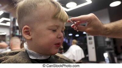 hair cut at the hairdresser - Cute boy makes a haircut in...