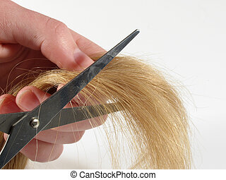 Hair cut - Close up of a lock of blonde hair with hand and...