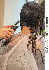 Hair Cut - Young woman, 25 years, getting hair cut, rear ...