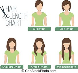 Hair length chart front view,5 different hair lengths. ...