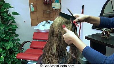 hair lock comb - hairdresser splits lock of long blond hair...