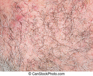 hair of the beard. close-up