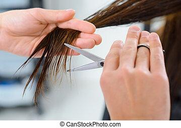 Hair trimming procedure in progress.