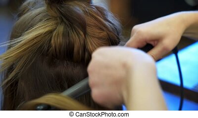 Hairdresser and woman - Hairdresser and young woman model